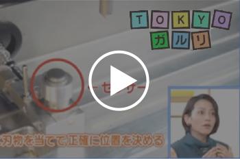 tokyogaruri_sam